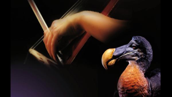 Musicomusée, Maurice le Dodo voyageur | Maison de la Radio